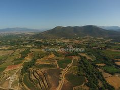 Ktima Tselepos Vineyards, Mantinia, Peloponnese Greece