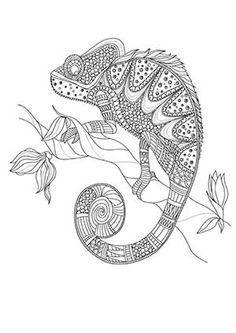 Camaleón monocromo para colorear página negro sobre blanco