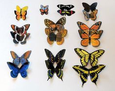 Check out Butterfly Magnets Hand Painted Both Sides Insects Set of 10 Multi Color Refrigerator Magnets Home Decor Gifts by artist Doug Walpus on dougwalpusartstudio