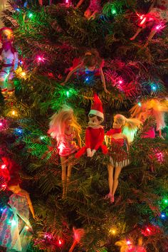 On the first day of Christmas my true love sent to me, an Elf in a Barbie tree #Barbie #12DaysofChristmas #ElfontheShelf