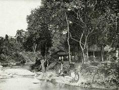 Gezicht op de Pabean rivier bij paal 65. Op de oever Inlanders bij hun behuizingen in een bosrijke omgeving. Surabaya 1903.