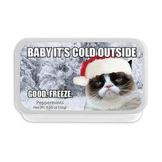Celebrate the holidays with the Amusemints Baby It's Cold Outside Mints. With an assortment of flavors like peppermint, cinnamon, and wintergreen in adorably festive tin packaging, these mints make a fun and decorative snack for the holiday season. Funny Grumpy Cat Memes, Stupid Funny Memes, Funny Relatable Memes, Haha Funny, Funny Dogs, Hilarious, Cute Animal Memes, Funny Animal Quotes, Cute Funny Animals
