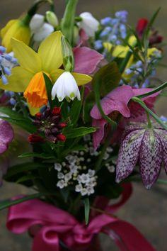 Laetitia's posy Flower Display, Planting Flowers, Porch Garden, Floral Centerpieces, Beautiful Flowers, Spring Flower Arrangements, Wonderful Flowers, Love Flowers, Beautiful Gardens