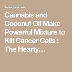 78 best medical marijuana images on pinterest cannabis edibles cannabis and coconut oil make powerful mixture to kill cancer cells fandeluxe Image collections