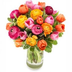 Dit boeket heeft iets bijzonders en brengt een vrolijke sfeer in huis. Door de mix van 2 grote seizoensfavorieten (tulpen en ranonkels) brengt dit boeket veel sfeer.