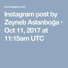 Instagram post by Zeyneb Aslanboğa • Oct 11, 2017 at 11:15am UTC