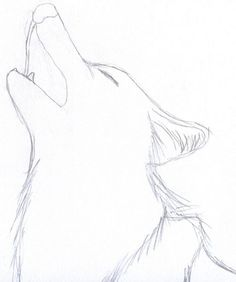 Easy Sketch Ideas For Beginners Pictures: Good Drawing Ideas For Beginners, – . - Easy Sketch Ideas For Beginners Pictures: Good Drawing Ideas For Beginners, – Drawings Art Gallery - ? Wolf Drawing Easy, Husky Drawing, Cool Easy Drawings, Easy Drawings Sketches, Drawing Tips, Art Drawings, Beginner Drawing, Drawings Of Wolves, Good Drawing Ideas