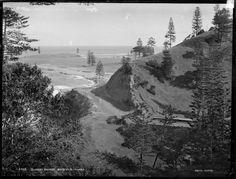 Bloody Bridge, Norfolk Island - glass plate negative,  Powerhouse Museum