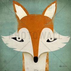 Fox - Tapetit / tapetti - Photowall