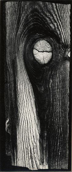 Minor White  (American, 1908–1976)  Untitled, Dark Canyon Lake, LaSal Mountains, Utah 1967  Gelatin silver print