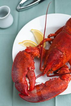 How to Choose, Cook, and Eat a Whole Lobster