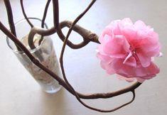Hazlo tú mismo: Cerezo en flor