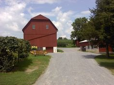 Joe Lapp farm - Noble Road, Bartville, PA - Southern Lancaster County - July, 2010