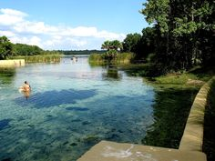 Salt Springs in the Ocala National Forest is about 35 miles southeast of Gainesville, Florida.  The Heart of Florida has the largest concentration of clear fresh water springs in the world.  www.GainesvilleFloridaHomes.com