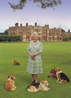 Queen Elizabeth II with her corgis at Sandringham House