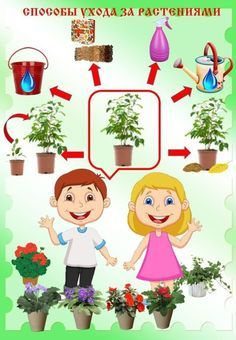 Kids Learning, Animals And Pets, Character, Art, Plant, Pets, Art Background, Kunst, Performing Arts
