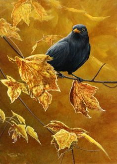 Jeremy Paul ACRYLIC. I chose this acrylic painting because it shows the cycle of seasons, this in Autumn, which is a feature of Sue Brown's work