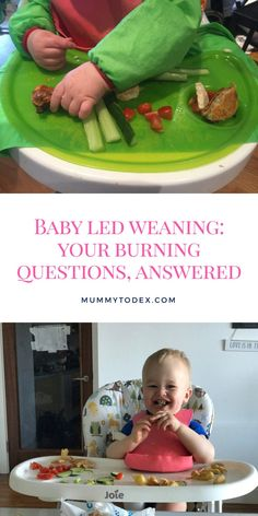 Mummy to Dex - Baby Led Weaning: Your Burning Questions, Answered. | Mummy to Dex