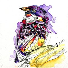 Rufous-Throated Tanager by FinchFight.deviantart.com on @deviantART