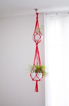 Pour accrocher plantes ou pour accrocher pot à maquillage & pdt de beauté dans salle de bain ! (ou PQ) <3