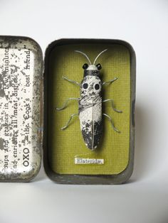 Elateridae Materials used: wire, book pages, reclaimed beads, a vintage food tin. All materials are recycled or found in my local area. Dimensions