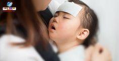 O governo da província de Aichi emitiu alerta para a epidemia de influenza. Saiba mais sobre isso, quais são os vírus e como se prevenir.