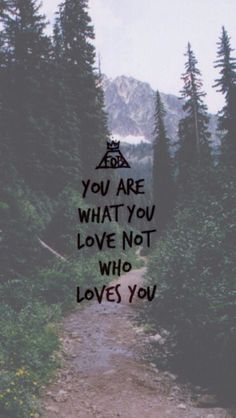 Quote: You are what you love not who loves you - Fall Out Boy