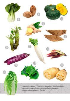 Japanese cuisine for beginners. The vegetables in Japanese cuisine.