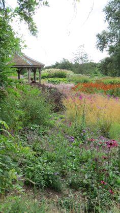 Oudolf, Public ~ Pensthorpe Millennium Garden, Fakenham, Norfolk, UK _/\/\/\/\/\_