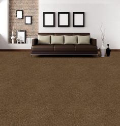 This Beautiful Dark Brown Carpet Brings A Real Cozy Comfort To This