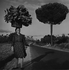 """luzfosca: """" Charles Fenno Jacobs A woman carries her truck-garden produce on her head, Portugal, circa """" Portugal, Vintage Photography, Street Photography, White Photography, Italian Proverbs, Black And White Artwork, Wine Quotes, Find Friends, Italian Wine"""