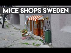 World's First Tiny Shops For Mice In Sweden