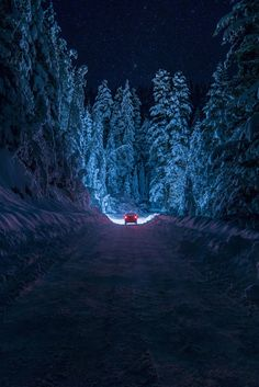 Winter Night Drive Bulgaria