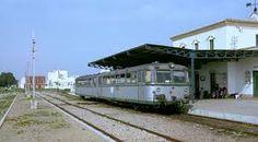 trenes - ferrobus