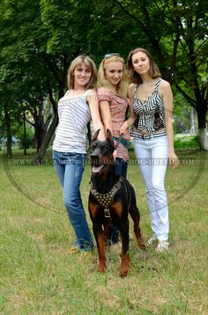 http://all-about-doberman-dog-breed.com/ #girl #doberman #photography