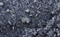 Skrivebordsbakgrunn: Vinterbilde av rim / Winter motive in frost I Wallpaper, Shag Rug, Frost, Winter, Decor, Shaggy Rug, Winter Time, Decoration, Blankets