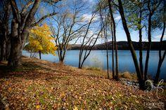 Isle of Que | Susquehanna River | Selinsgrove, Pennsylvania | Susquehanna University | Fall Colors   Chelsea Haisman Photography