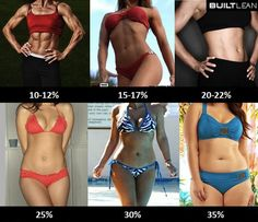 Pourcentages de graisse et abdos chez les femmes
