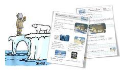 L'ours polaire : la fiche documentaire   Bout de Gomme