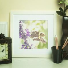 Purple Butterfly Fine Art Photographic by NicoletteAnneDesign, $19.49