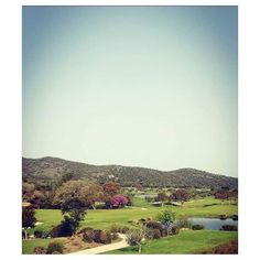 Spring Postcard from #Maremma Tuscany  #argentarioexperience
