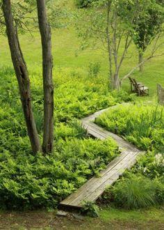 Une allée de jardin à l'esprit nature avec planches de bois et fougères…