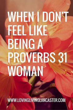 Some days, it feels like a dark cloud looming over my head. Some days I DON'T feel like being a Proverbs 31 woman.