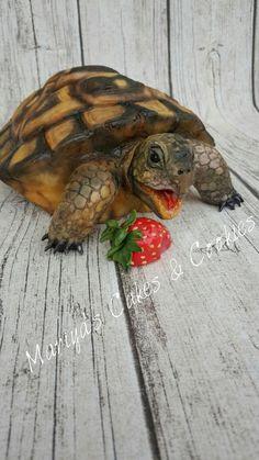 Turtle love by Mariya's Cakes & Cookies