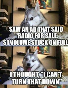 Find very good Jokes, Memes and Quotes on our site. Keep calm and have fun. Funny Pictures, Videos, Jokes & new flash games every day. Funny Husky Meme, Funny Animal Jokes, Dog Jokes, Puns Jokes, Corny Jokes, Dog Quotes Funny, Funny Puns, Stupid Funny Memes, Funny Relatable Memes