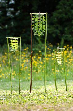 """Another totally zen photo from 'escher is still alive': """"3 Framed Rowans"""" (2009)"""