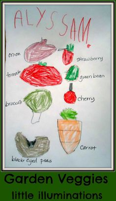 How Does Your Garden Grow? Learning About Plants in Pre-K