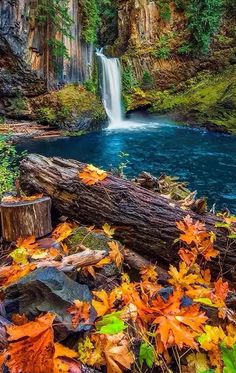 56 Trendy Nature Photography Landscape Trees Fall photography nature landscape is part of Autumn scenery - Beautiful Nature Pictures, Beautiful Nature Wallpaper, Amazing Nature, Nature Photos, Beautiful Landscapes, Beautiful Beautiful, Beautiful Photos Of Nature, Amazing Photos, Autumn Scenes