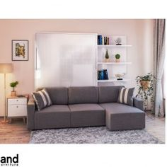 11 Queen Murphy Bed With Sofa Murphy Bed With Sofa, Queen Murphy Bed, Modern Murphy Beds, Murphy Bed Plans, Sofa Couch, Sofa Set, Couches, Sofa Design, Hidden Wall Bed