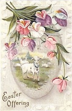 """Easter Offering"" lambs with sweetpeas"